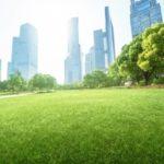 FAO lance l'initiative Villes vertes
