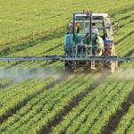 L'agriculture et la sécurité alimentaire face à la crise Covid-19