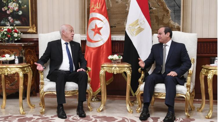 سعيد عن أزمة سد النهضة: تونس لا تقبل المساس بأمن مصر المائي
